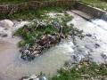 6. JU river view 1