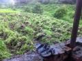 8. JU field recently plowed by the farmer